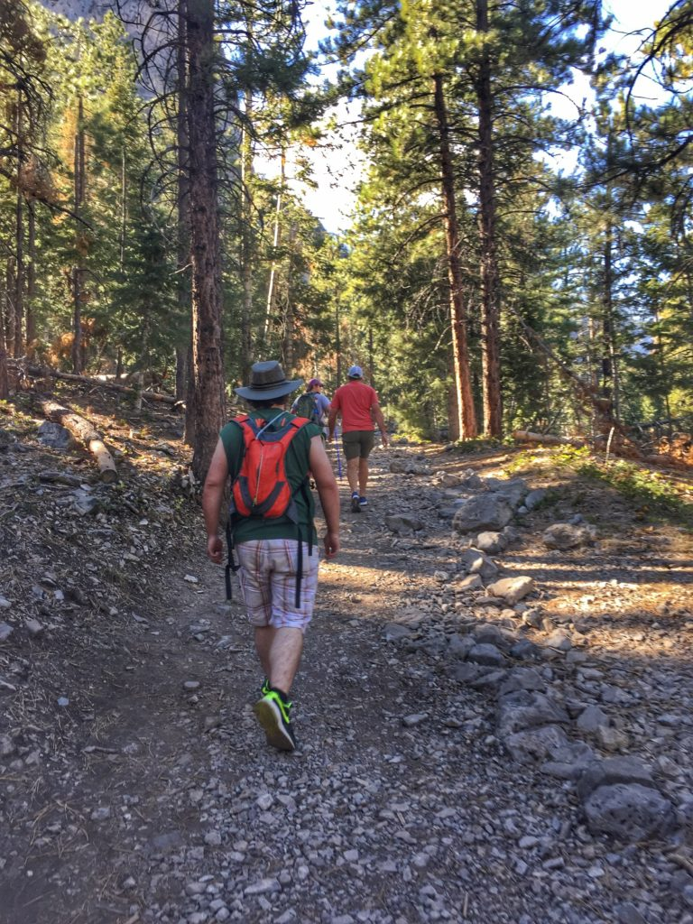 Hiking Mount Charleston