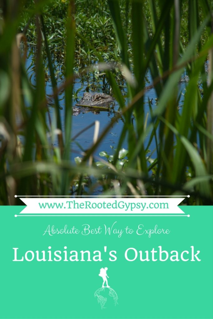 Louisiana's Outback