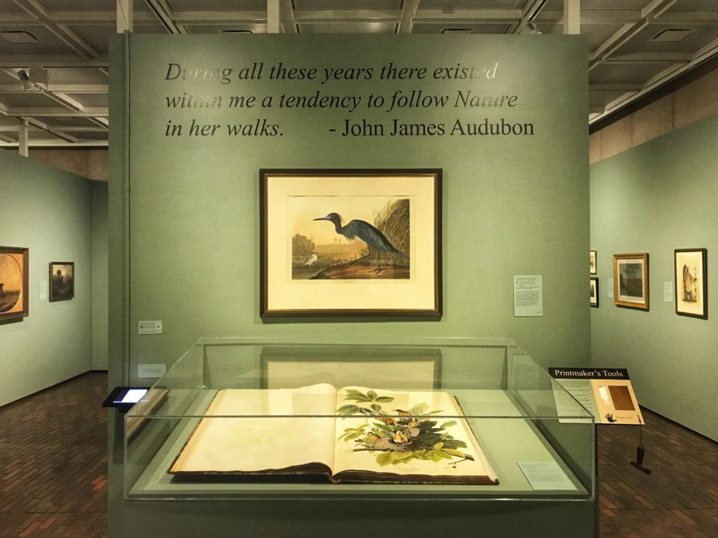 John James Audubon Prints Stark Museum of Art Orange Texas