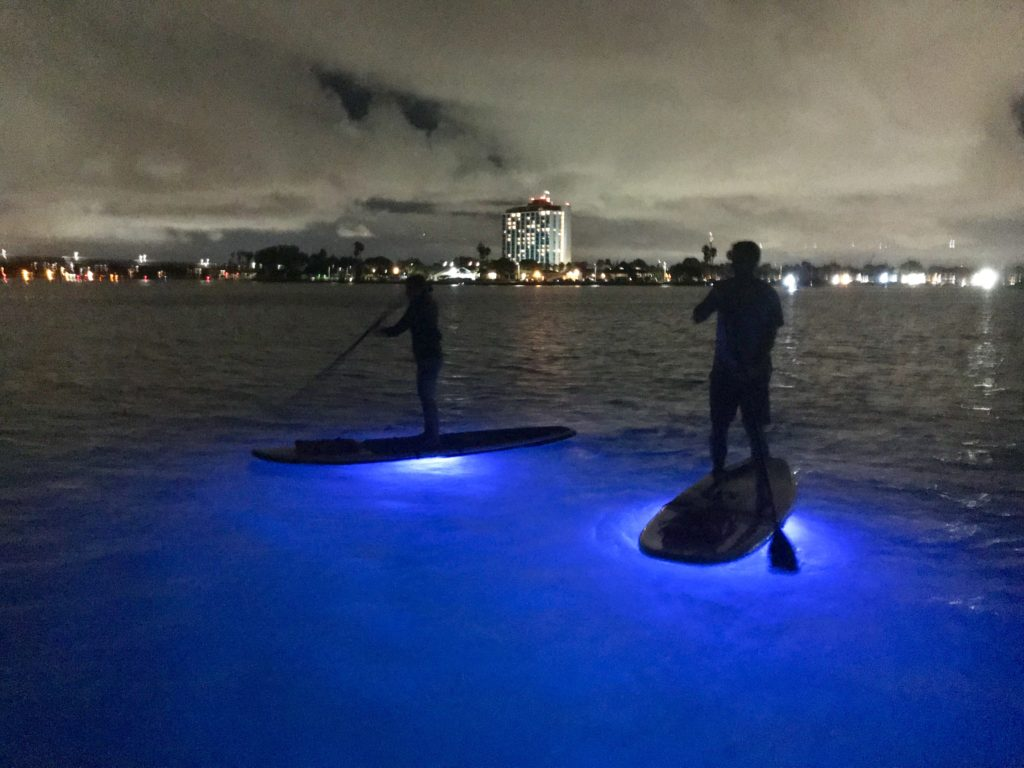 Paddle boarding at night in San Diego