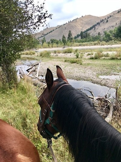 Riding along Clark Fork River